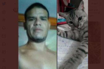 Detienen a hombre que mató y se comió a un gato en Margarita (fotos) 1
