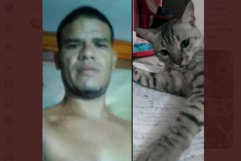 Detienen a hombre que mató y se comió a un gato en Margarita (fotos) 3