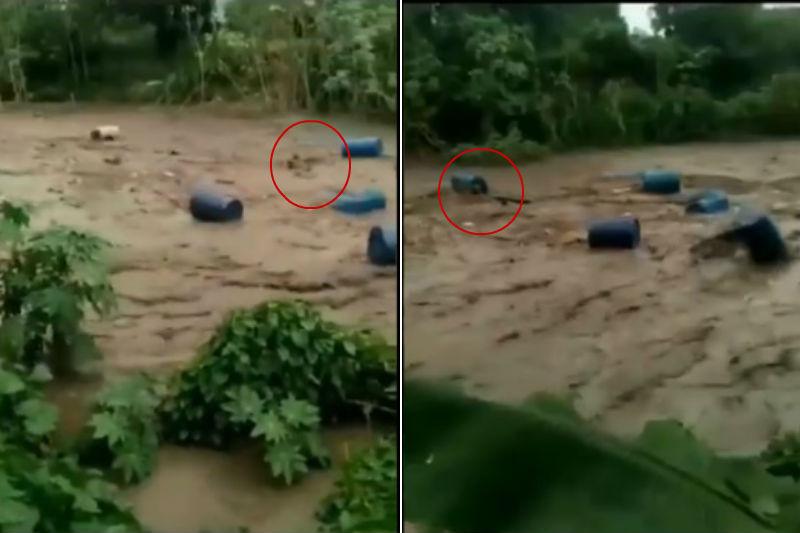 Hombre que fue arrastrado por el río El Limón en Maracay fue rescatado (video) 1