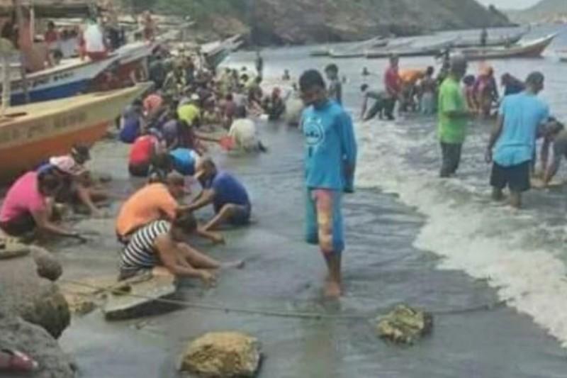 Esto fue lo que encontraron los habitantes de Guaca en la playa (Fotos) 3